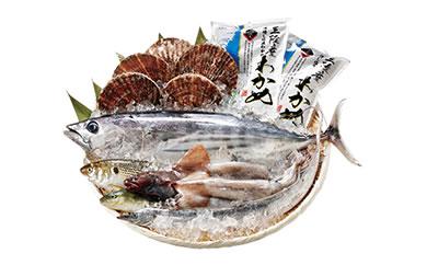 地元漁師さんと一緒に新鮮でおいしいお魚をお届けします!【唐桑漁師さんの鮮魚セットC】