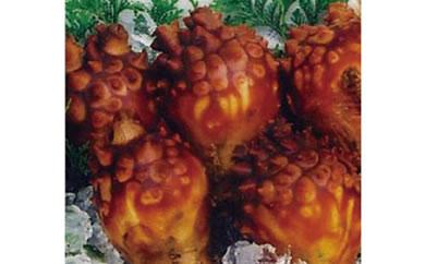 ミネラル豊富な海の果実唐桑産殻付きほやセット