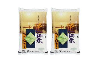 【29年産】近江米こしひかり5㎏×2袋【T020-C】