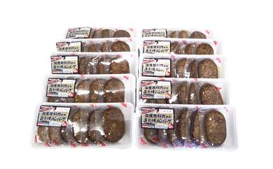 国産原料肉使用直火焼ハンバーグ(てりやきソース)432g(6個)×10パック入り
