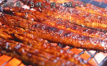 横山さんの鰻☆泰正オーガニック蒲焼き3尾