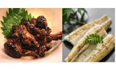 鹿児島県大隅産 千歳鰻の白焼き鰻 5尾・鰻焼肝セット