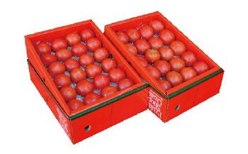 特選徳谷トマト生産者52番2kg