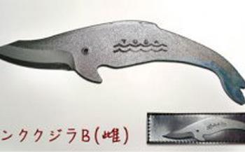 くじらナイフ 専用ケース付き【ミンククジラB雌】
