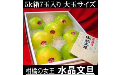 南国土佐の女王柑橘水晶文旦 5kg7玉入り 大玉サイズ