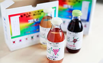 「葡萄DE酢」「ボイセンベリーDE酢」「桃DE酢」他全15種類のDE酢