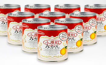 小原紅みかん缶詰EO5号