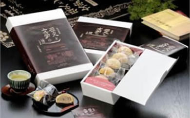 佐伯市菓子組合が共同開発した佐伯の和菓子新銘菓『歴史と文学の道』(5個入)