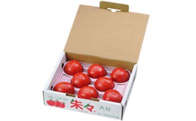 フルーツトマト朱々(LLサイズ) 1kg 8~10玉