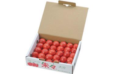 フルーツトマト朱々(Sサイズ) 1kg 24~30玉