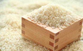 真岡産コシヒカリ30kg白米