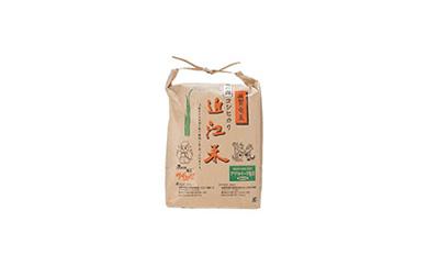 2018年収穫竜の舞こしひかり(白米)5kg