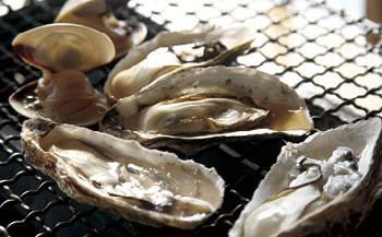 糸島の牡蠣づくしセット