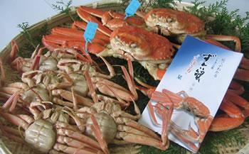 石川県産 加能かに(ずわい蟹)・香箱かに詰合せ(計7匹)
