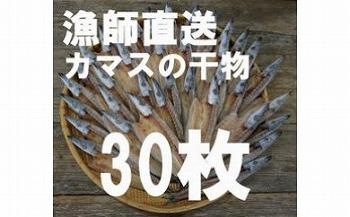 漁師直送!カマスの干物30枚セット!