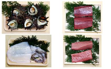 五島活魚セットA(冷蔵)