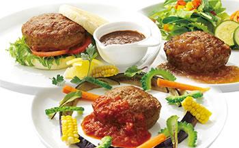※D214-C移行※米久ハンバーグと豚肉の味噌煮込み、和醤煮込みのセット