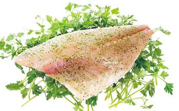 パンにも合う【himonoペッシュール】、真鯛のパセリ風味