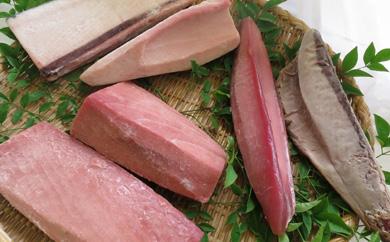 刺身セット(南マグロ、バチマグロ、ビンナガマグロ、カツオなど)