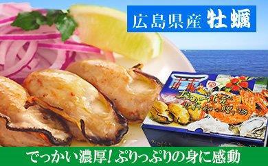広島カキ牡蠣(冷凍)特大2Lサイズ10kg(1kg×10袋)